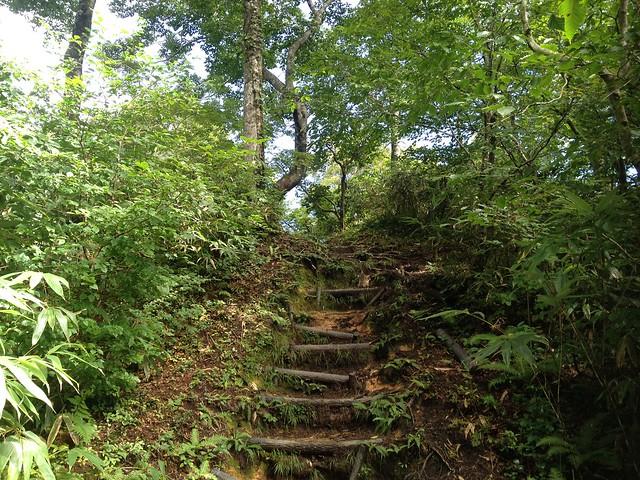 冠山 丸太階段