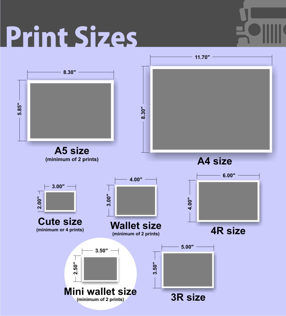 Plus Size Shoe Sizes