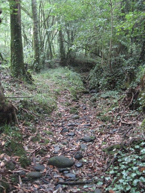 Sendero en la Ruta dos ríos Vilacoba e San Xusto