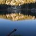Dusk at  Ten Lakes, Yosemite National Park, California