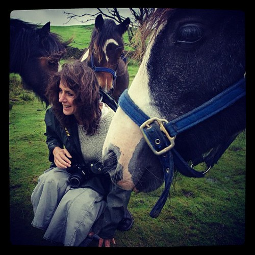 Nuzzled back: Kate #nuzzle #nuzzled #pony #ponies #Kate #instahub | by Briggate.com