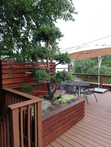 Rustic japanese modern roof deck topiarius urban for Japanese decking garden