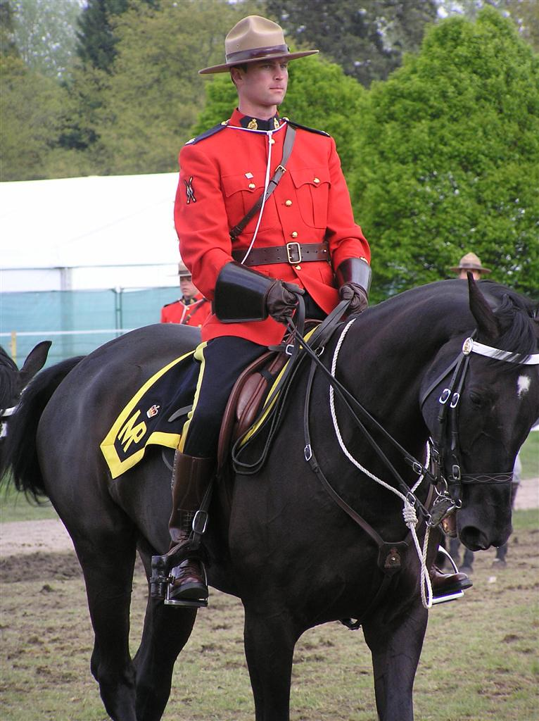 the royal canadian mounted police Offenderwatch, the largest sex offender registry network in the us, awarded contract with the royal canadian mounted police.