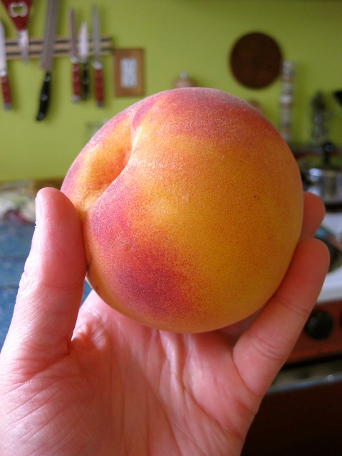 perfect peach | Flickr - Photo Sharing!