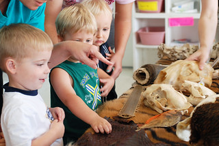 HMNS Outreach: Wildlife on Wheels | by Houston Museum of Natural Science