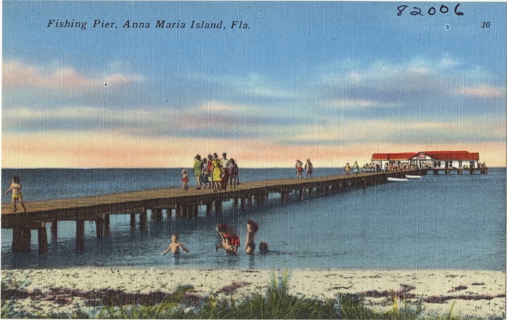 Anna maria island fishing tips-8247