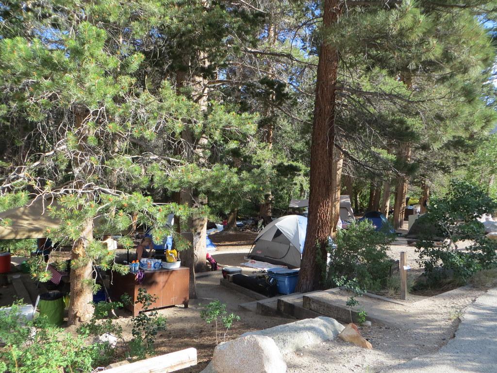 Bishop park campground children fishing in bishop creek n for Bishop creek fishing