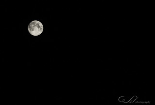 The Blue Moon 2012 | by Wendy Longo photography