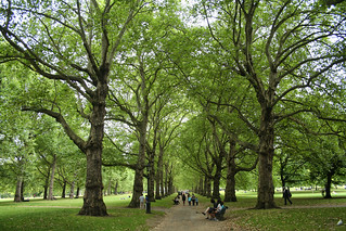 Green Park, London | by larigan.