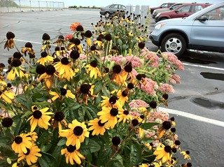 Journey To Old Orchard Beach, Maine! - The Royal Anchor Hotel - Flowers in the Parking Lot | by Polterguy30