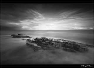 Cullernose Point Mono | by Dougie Williams