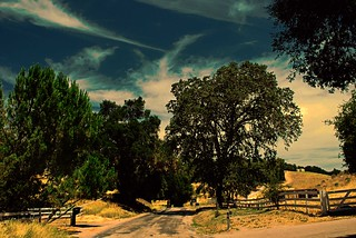 Paso Robles Wine Country Back Road | by trishhartmann