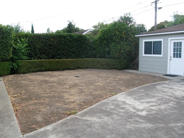 Empty Space In Backyard : Empty yard, view from driveway