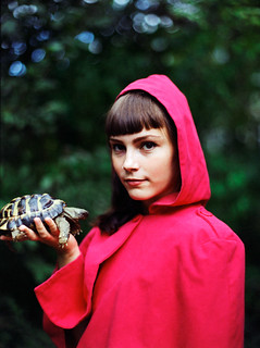 Who said that little red riding hood didn't carry a tortoise? | by her.self