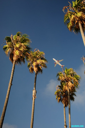 TakeoffThroughThePalms | by mcshots