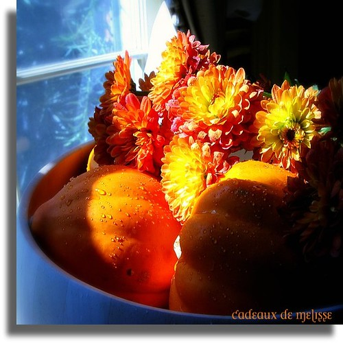 autumn still life .... | by The Gifted Photographer