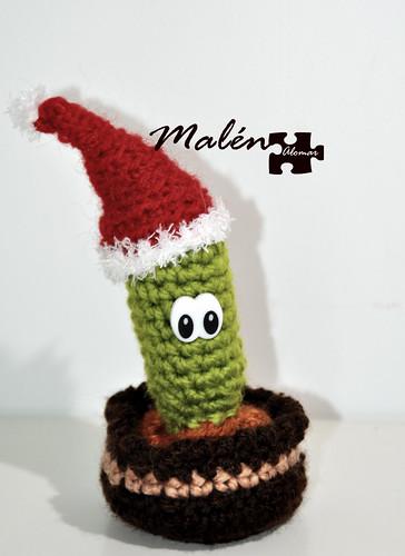 Cactus navide o se quedo para felicitar las navidades en for Cactus navideno