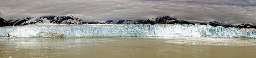 Four miles of the face of the Hubbard Glacier | by addie cass