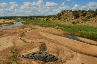 Letaba river | by anacm.silva
