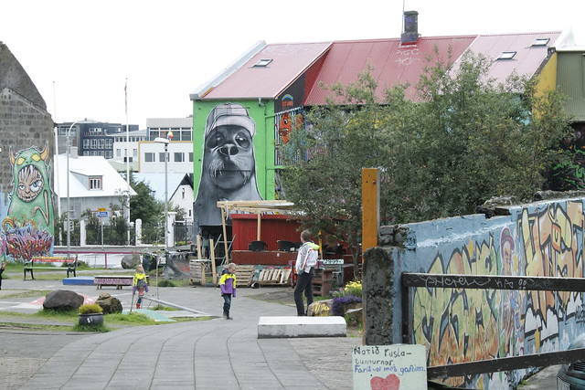 Islandia Sur - Reykiavik