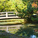 37/52 - japanese garden