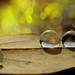 Water Drops 15