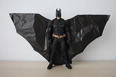 [DIY] BATMAN WING