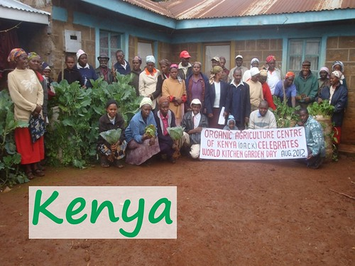 World Kitchen Garden Day 2012 | by SeedMoney.org