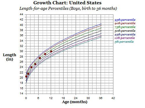 Growth Chart 12 Months Length Lovemeghan Flickr