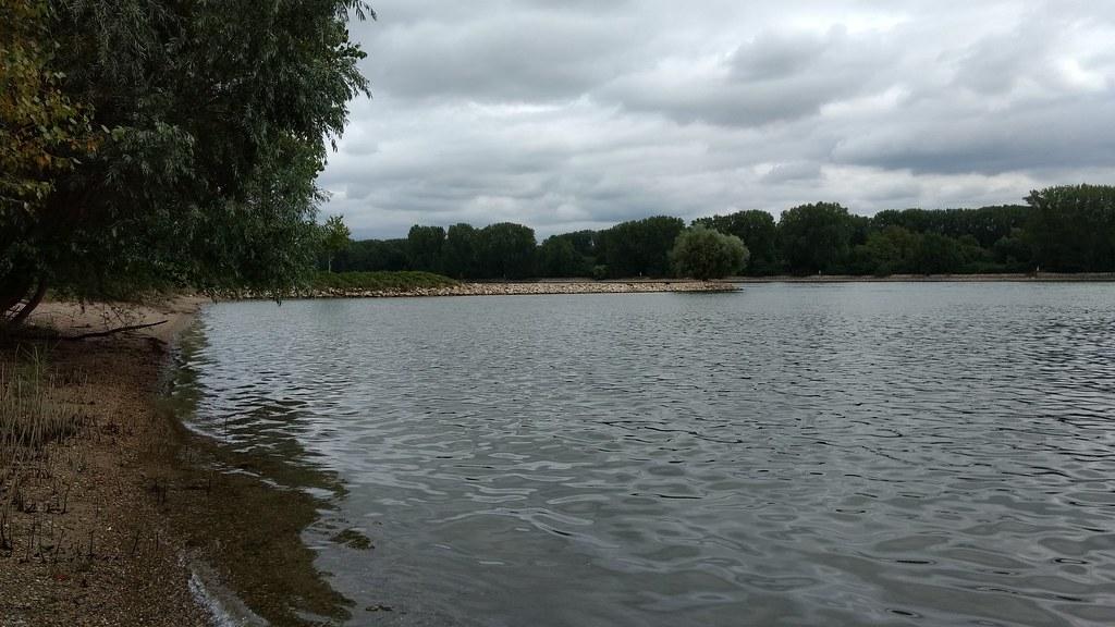 Am Rhein - auf dem Weg nach Ibersheim