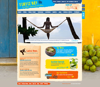 Turtle Bay | by Design & Tonic