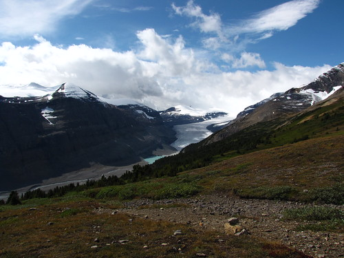 The Saskatchewan Glacier from Parker Ridge, Banff National Park, Alberta