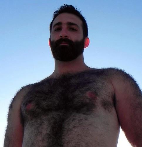 Hairy bear men   bear men   Pinterest   Bj  rnar Chumley s Bear Cruise         jpg