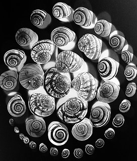 Spirals in a spin - Explore 26.9.12 (albeit very briefly!) | by Jo Evans1