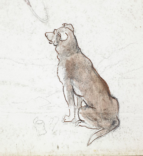 A coloured sketch of a seated brown dog croquis en coul for Cout d un chien assis