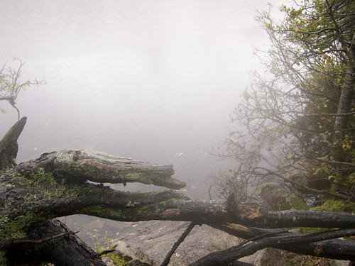 Franconia Notch State Park: up the mountains | by november bed