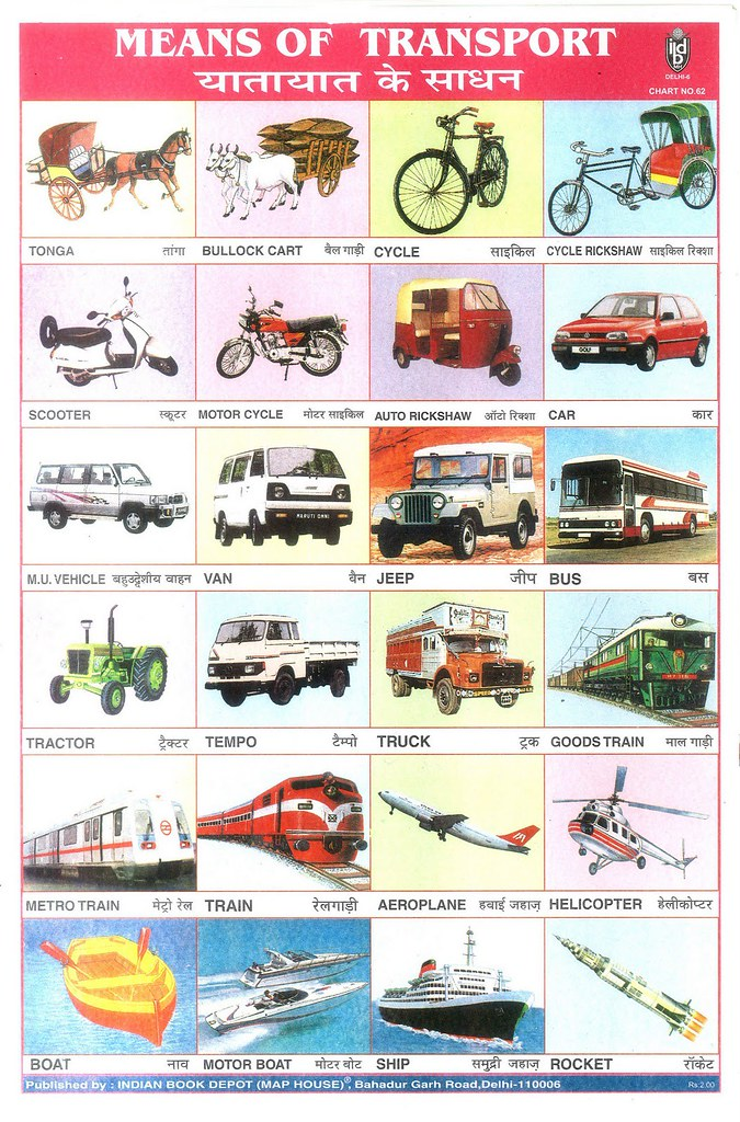 8056498358 on Means Of Land Transportation