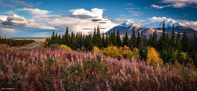 Near Kluane National Park 3