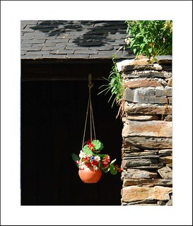 hanging flower pot... | by xeniussonar