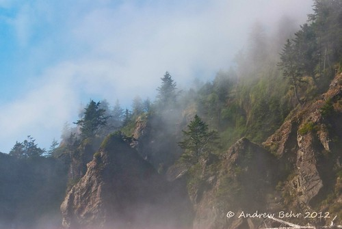 Fog on Second Beach. Olympic Peninsula,Washington. | by Andrew Behr