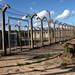 There are 51 prisoners awaiting execution in Zimbabwe. Credit: Nyarai Mudimu/IPS