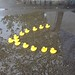 Rubber Duckies in Formation