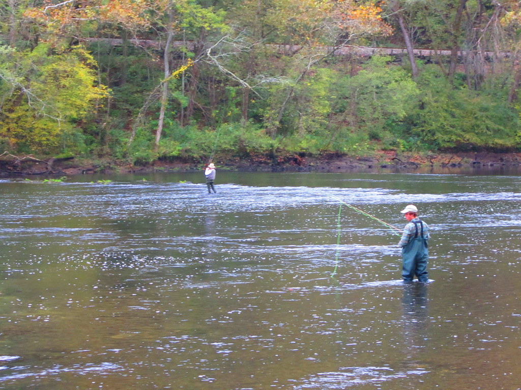 Fly fishing 161 fly fishing on the clinch river clinton for Clinch river fishing