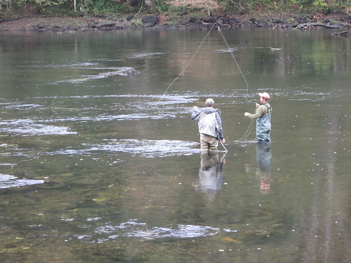 Fly fishing 106 fly fishing on the clinch river clinton for Clinch river fishing