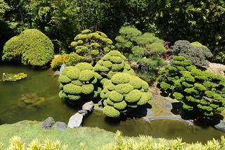 japanese tea garden, s.f. | by hannu & hannele