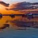 Sunset on the Fleet