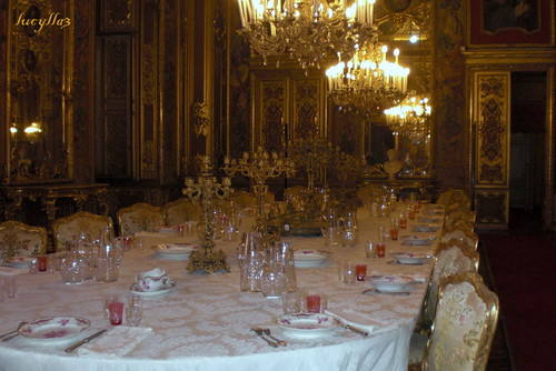 Sala da pranzo a palazzo reale a torino luciana inconis for Sala da pranzo reale