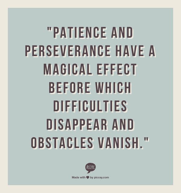 Persistence Motivational Quotes: Patience And Perseverance Have A Magical Effect