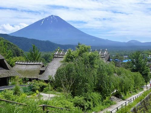jp16-Fuji-Saiko-Village (8)