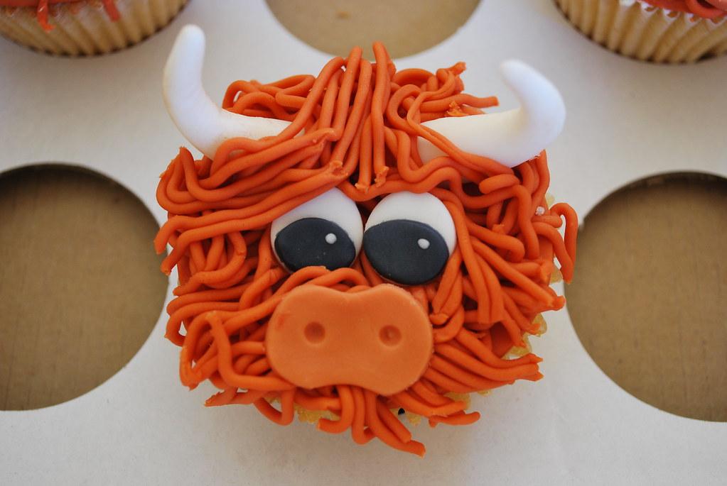 Highland Cow Cupcakes Country Bumpkin Cakes Flickr